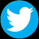 logo_twitter_lien_digitalis_page